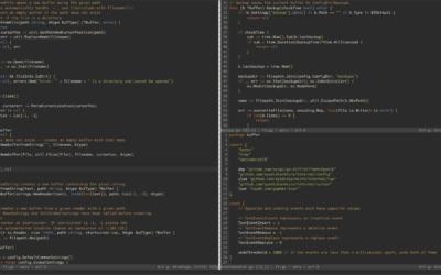 Micro Editor per linux